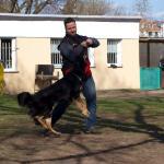 /vor_2012/fg-thumbs/P4025419 image